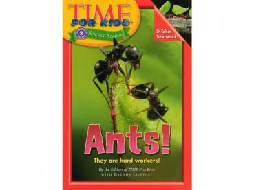 Book: Time for Kids - Ants!