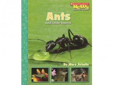 Book: Ants - And Other Insects