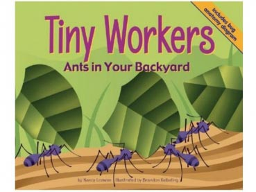 Book: Tiny Workers