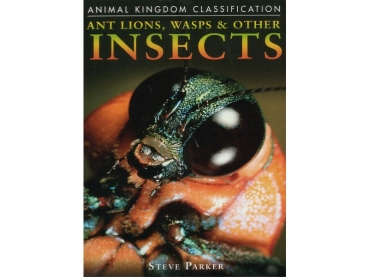 Book: Ant Lions, Wasps & Other Insects