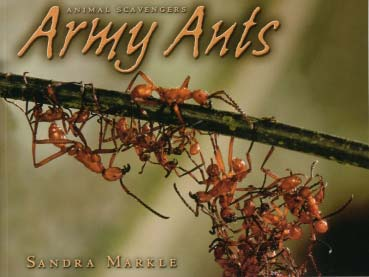 Book: Army Ants