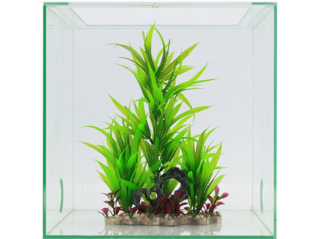 Antstore ameisenshop ameisen kaufen pflanzen im for Einrichtung deko shop