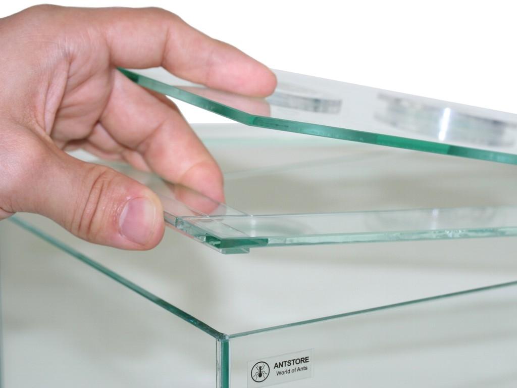 ANTSTORE - Ameisenshop - Ameisen kaufen - Ameisenarena Rahmen 30x30